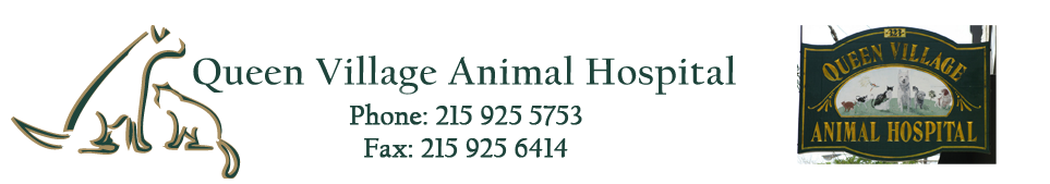 Logo for Queen Village Animal Hospital – Veterinary Clinic Philadelphia
